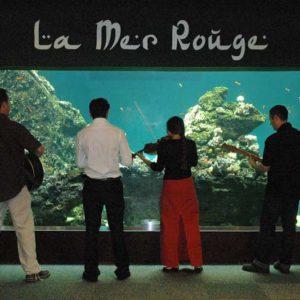 activite-a-faire-en-vendee-concert-reception-aquarium-vendee
