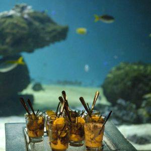 activite-a-faire-en-vendee-location-salle-aquarium-vendee