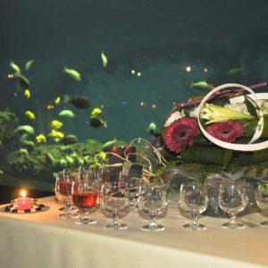 Location de salle Vendée - privatiser l'aquarium de Vendée pour votre soirée