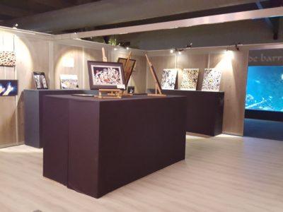 Exposition - découvrez les tarifs aquarium Vendée pour vos oeuvres