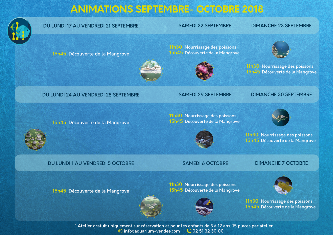 ANIMATIONS 17 SEPT-7 OCT SANS PROMO