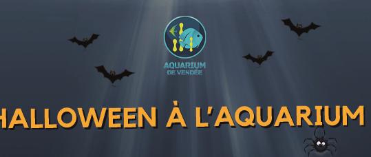 aquarium-talmont-vacances-toussaint-aquarium-de-vendee