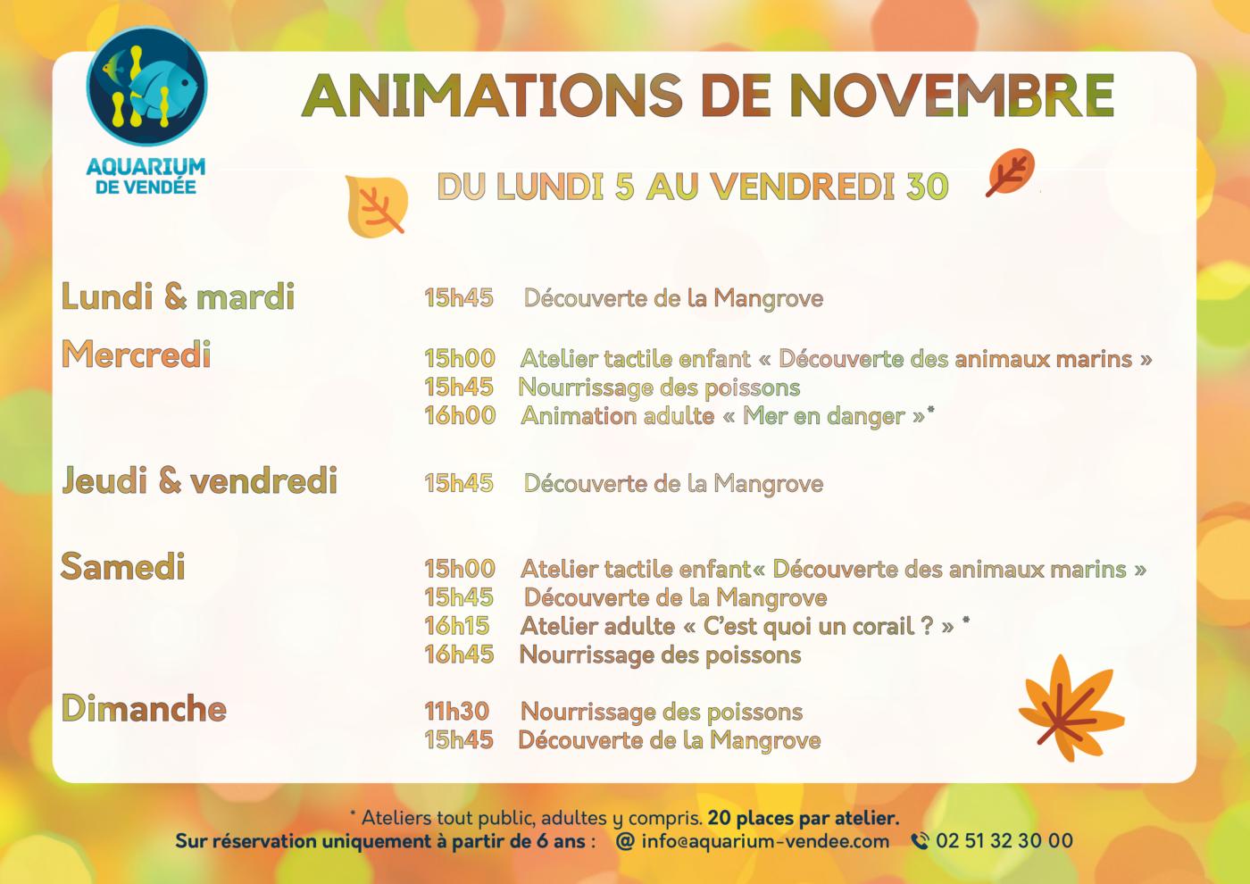 aquarium-vendee-animations-de-novembre-2018-aquarium-de-talmont