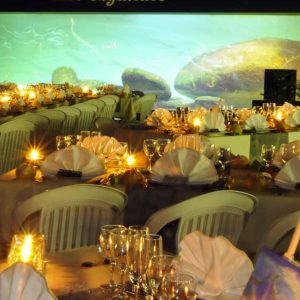 activite-a-faire-en-vendee-salle-reception-aquarium-vendee