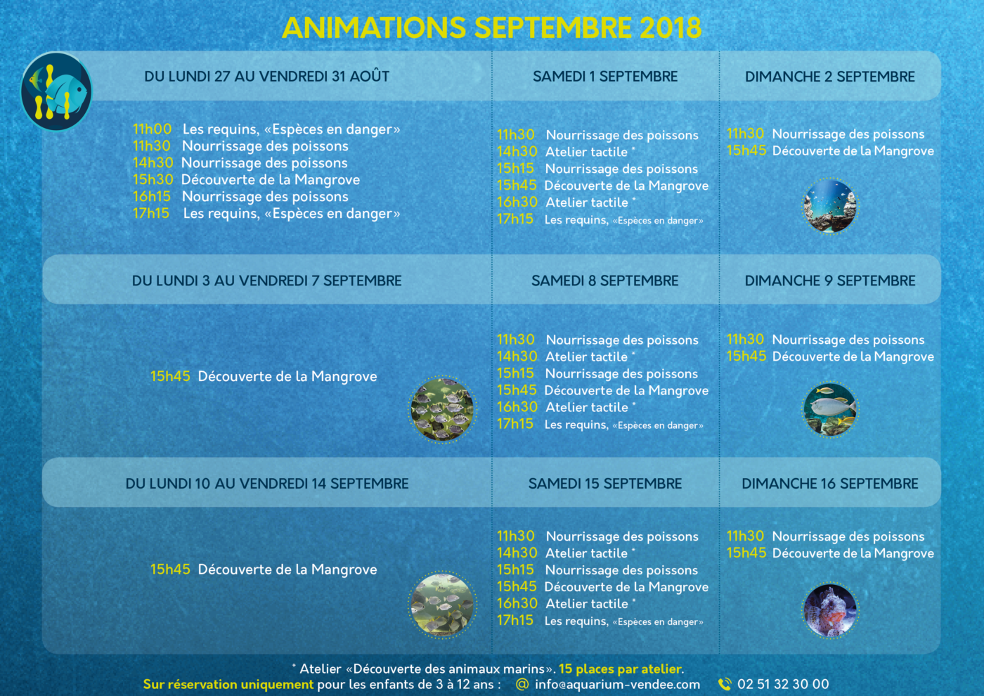 ANIMATIONS 1 SEPT-16 SEPT SANS PROMO